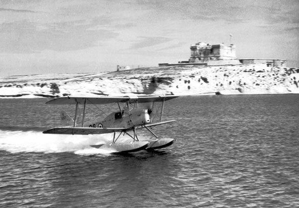 Drone — «трутень», ироническое флотское прозвище первого в мире БПЛА — британского радиоуправляемого самолёта-мишени Havilland Queen Bee («пчеломатка»), созданного ещё в 30-е годы на базе легкомоторного «мотылька» Moth.