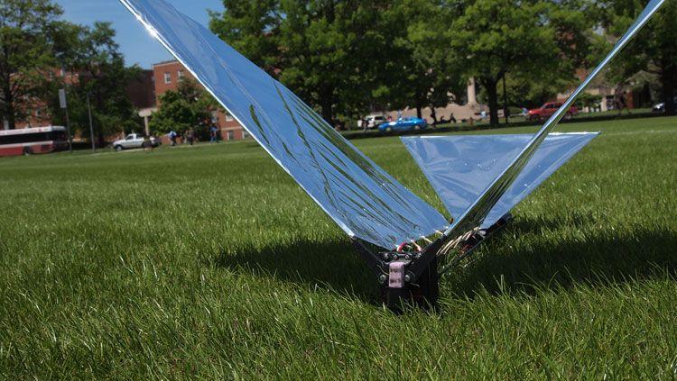 На «Робо-ворона», разрабатываемого в Мэрилендском университете, уже имеют виды военные: характеристики маневренности этого дрона не имеют равных в летательной технике
